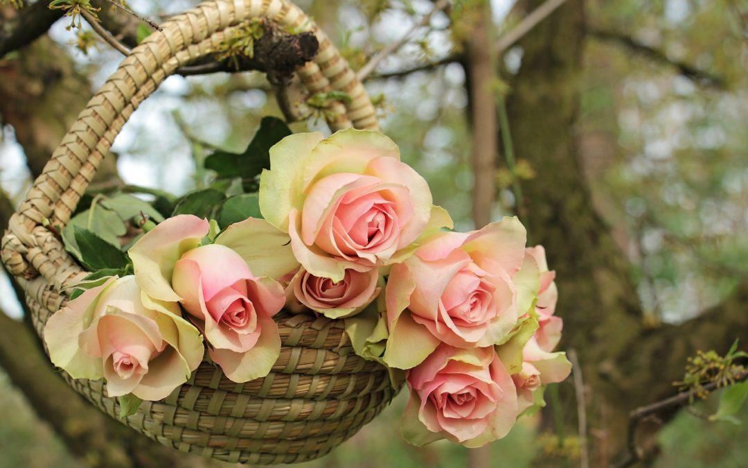 Zum Muttertag für mich, meine Mutter und für alle Mütter dieser Welt